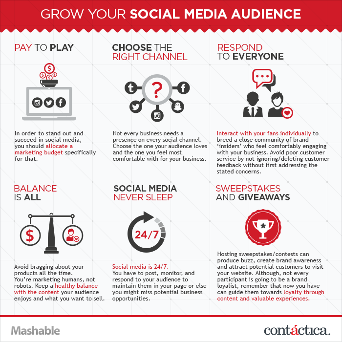 how to grow social media audience